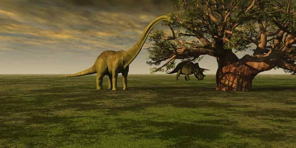 disparition-des-dinosaures-encore-un-mystère