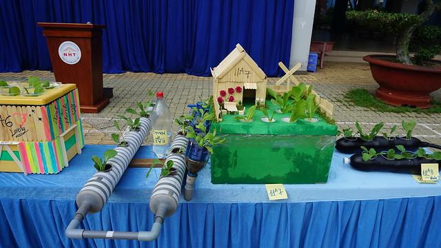 Thi mô hình rau thủy canh