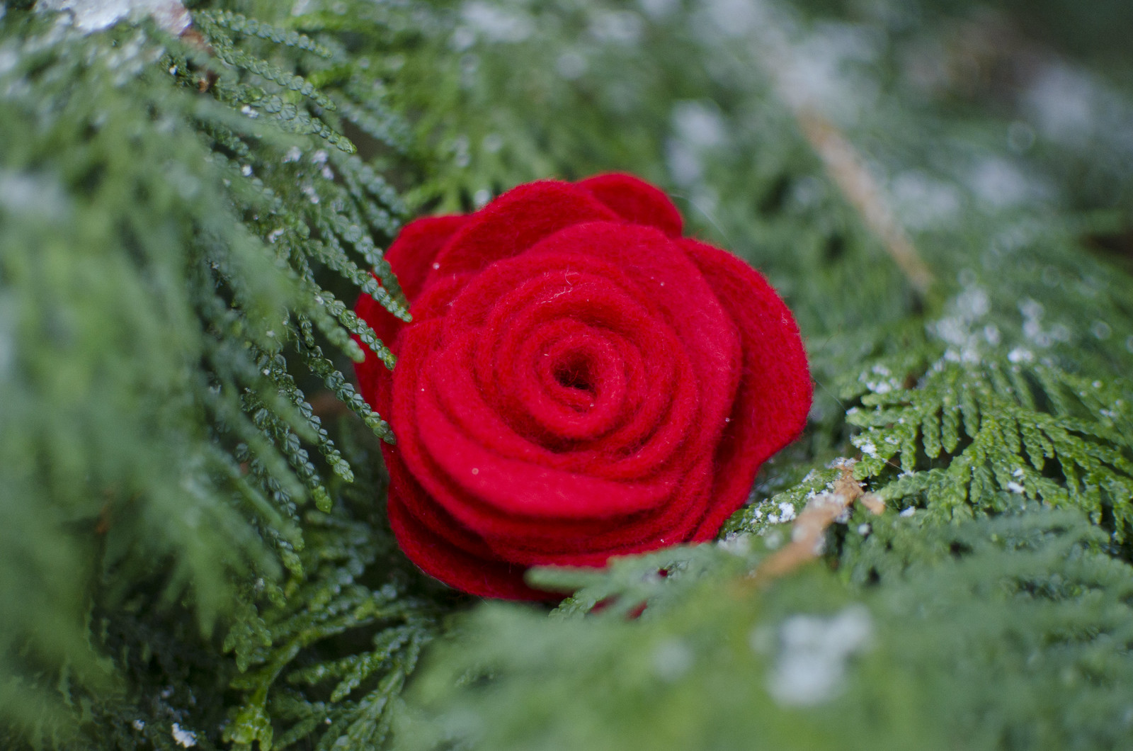 rose ornament 4