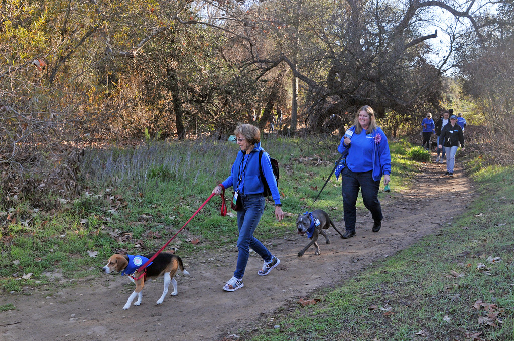 Canine Ambassador Nature Hike-RC-012619 (40) | San Diego