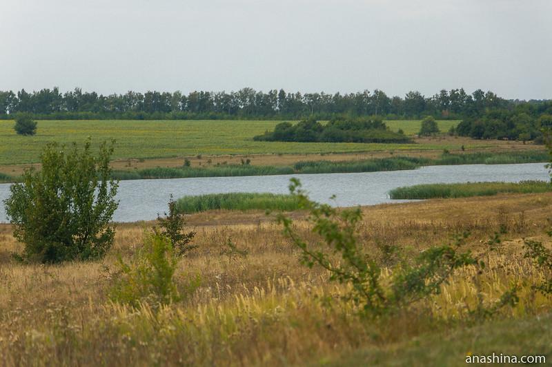 Водоем, Воронежская область