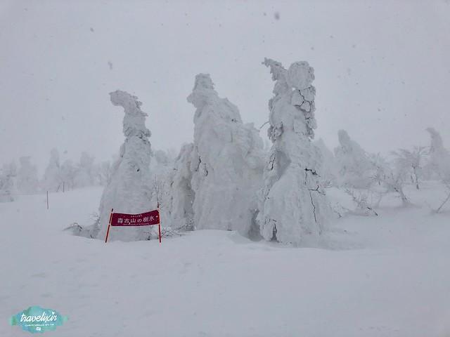 森吉山樹冰