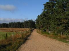 20080907 31670 1008 Jakobus Wald Wiese Feld Weg Pilger - Photo of La Chaze-de-Peyre