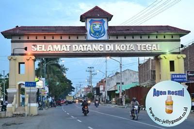 Agen / Stokis QnC Jelly Gamat Tegal, Margadana, Slawi, Kedungbanteng