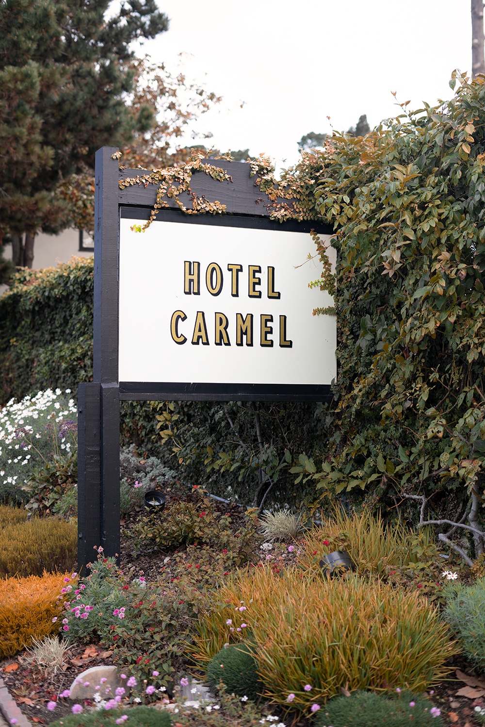 04hotelcarmel-carmel-travel