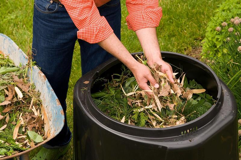 composting_yard_hands_leaves_bin