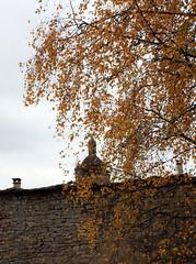 église d'Orgelet à travers le feuillage d'automne