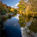 Churnet Valley Autumn