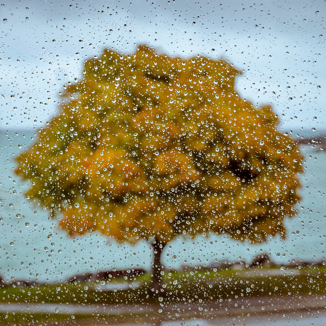 View on a Rainy, Nikon D5100, AF-S DX VR Zoom-Nikkor 16-85mm f/3.5-5.6G ED