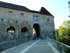 ljubljana-castelul de pe deal/ljubljana-the castle