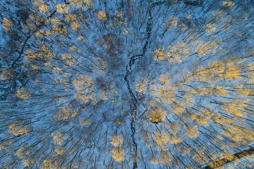 getoutside optoutside blackfriday winter cold aerial amazing frozen ice life nature landscape peaceful woods woodland thanksgiving drone drones dji djiphantom4 phantom4