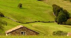 Collado de Hoz (Cantabria, Sp)