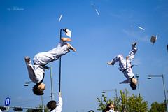 Taekwondo exhibition. Seoul, South Korea