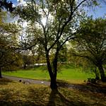 Sunlit Avenham Park, Preston