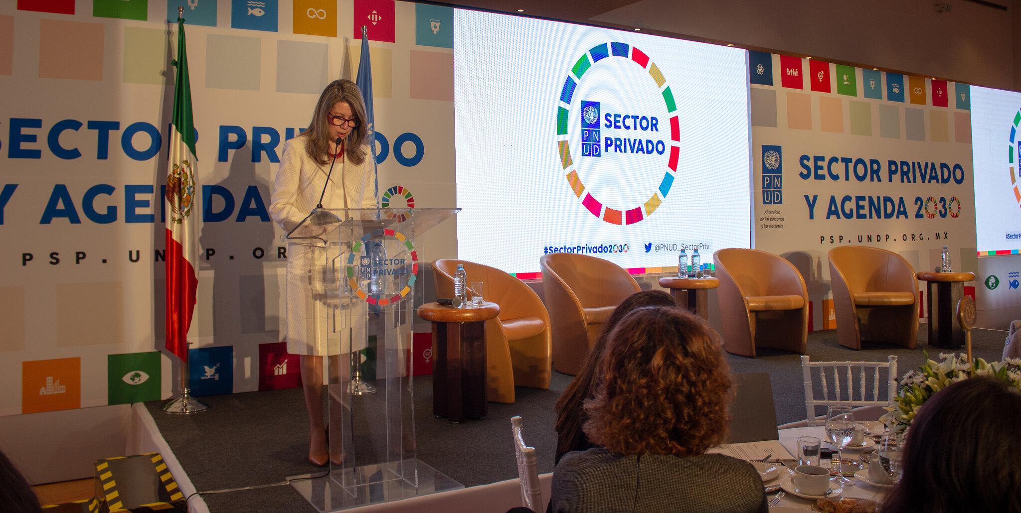 Plataforma para el Sector Privado y la Agenda 2030