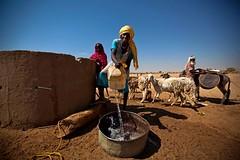 Taking water in a well, Darfur