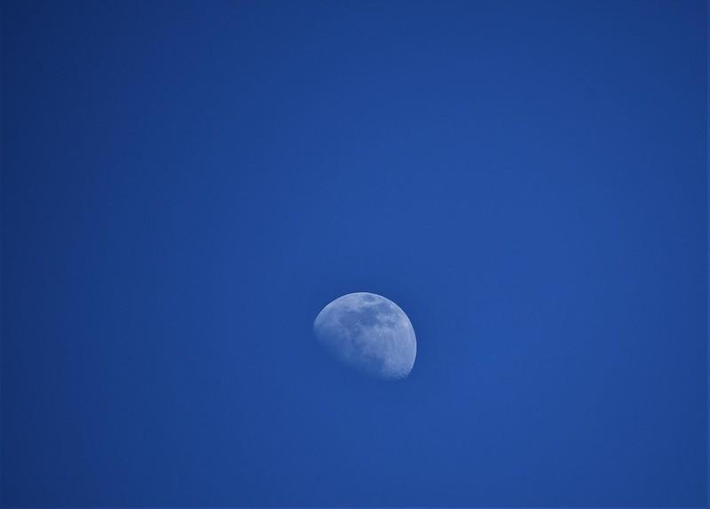 Moon 16.03 (1)