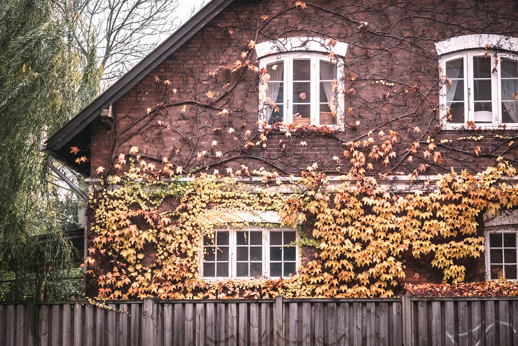 Köpenhamn_DSF1073