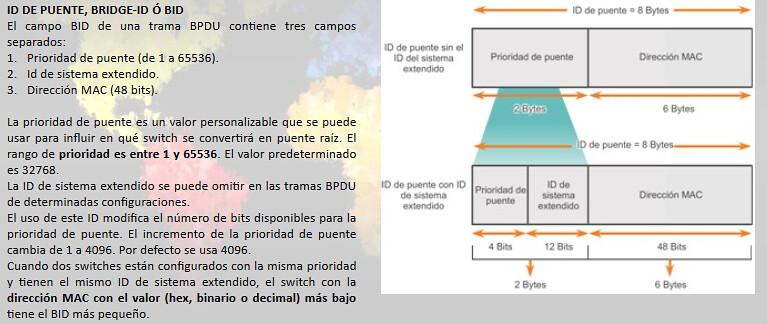 STP Imagen 5