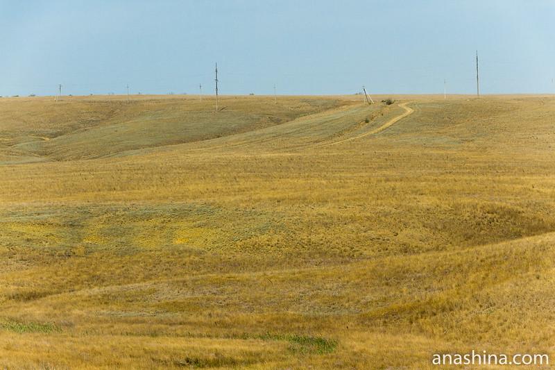 Сухая степь, Крым