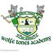 Wolfe Tones Academy