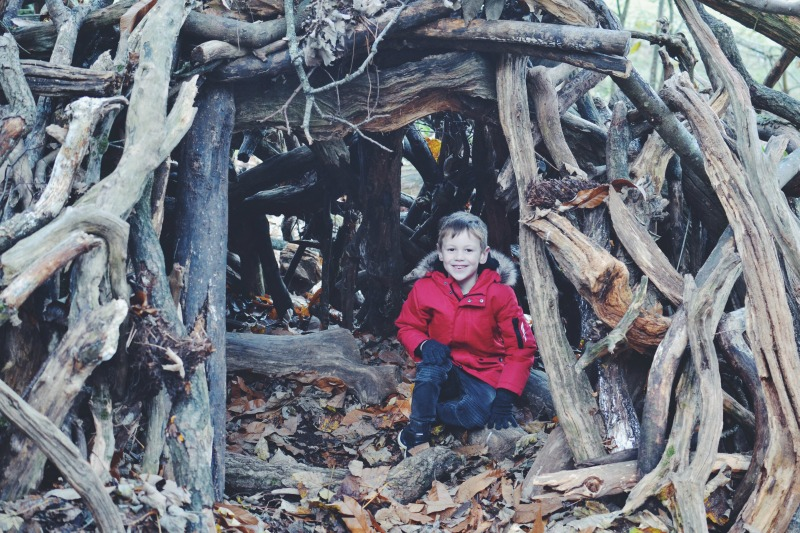 Den building Autumn Walk