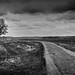 panorama-solitude