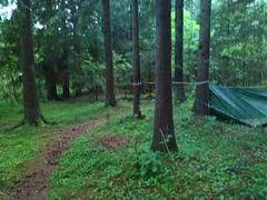 Presenningen Henstadskogen_20170603_154857