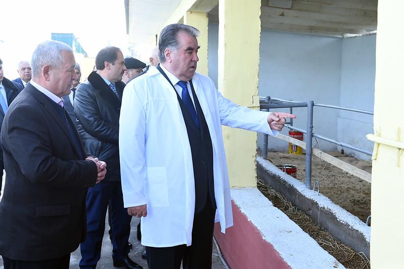 Ознакомление с образцовой деятельностью дехканского хозяйства «Содик-Сиддик» района Рудаки
