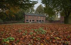 Autumn Time at Dunham