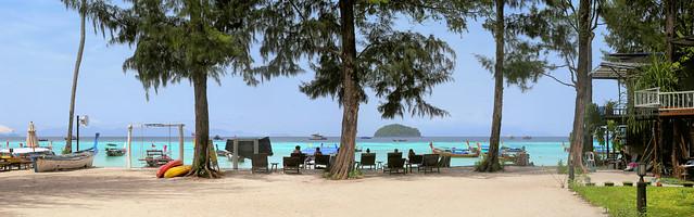 Salisa resort under the pine trees