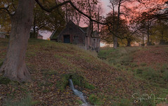 Terrapin Manor Farm