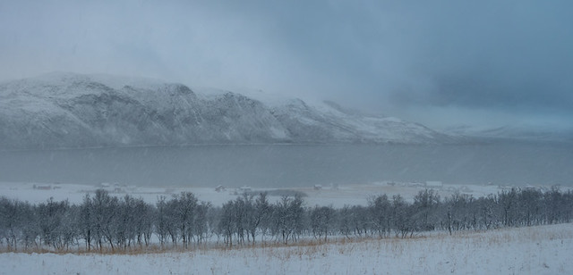 GrunnfjordenWinter