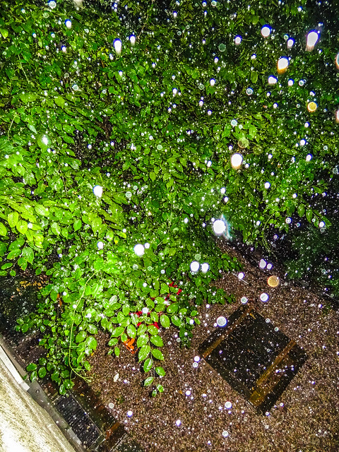 rain, Sony DSC-HX10V