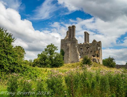 Ballycowan Castle.