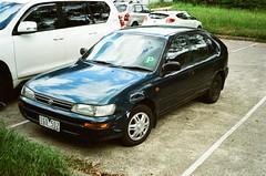 1995 Toyota Corolla Seca