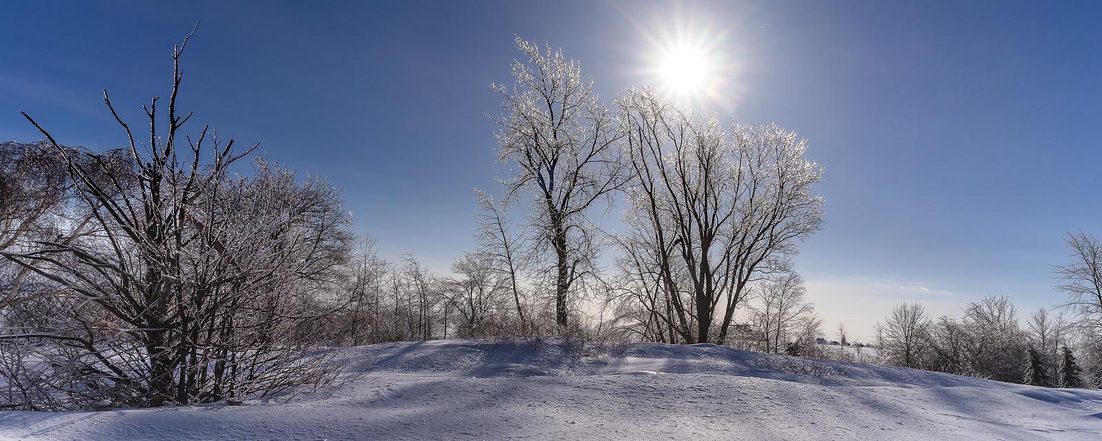 Ah ! Comme la neige a neigé... 33018366648_28cc4c2b55_h