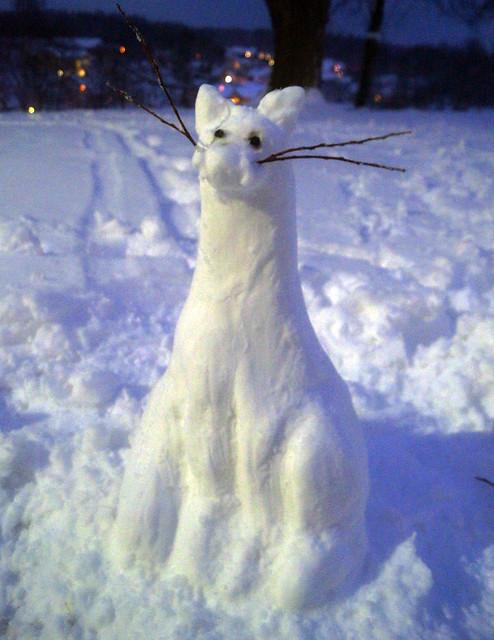 snowcatC05134