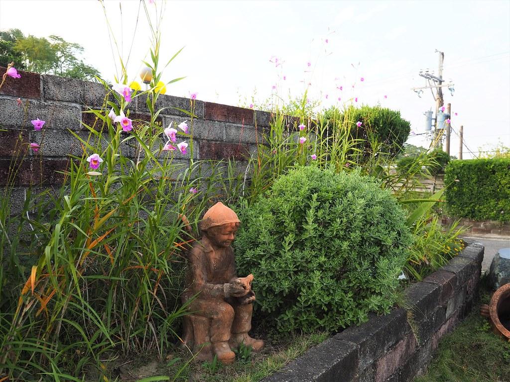 山上蘭科植物園 (2)