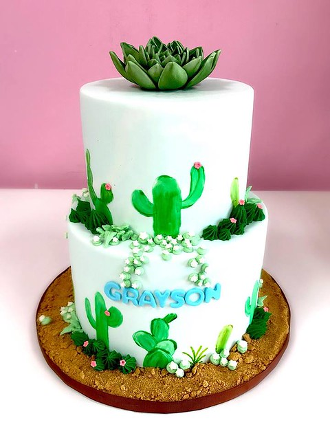 Hand Painted Succulent Cake by Seyda's Cakes