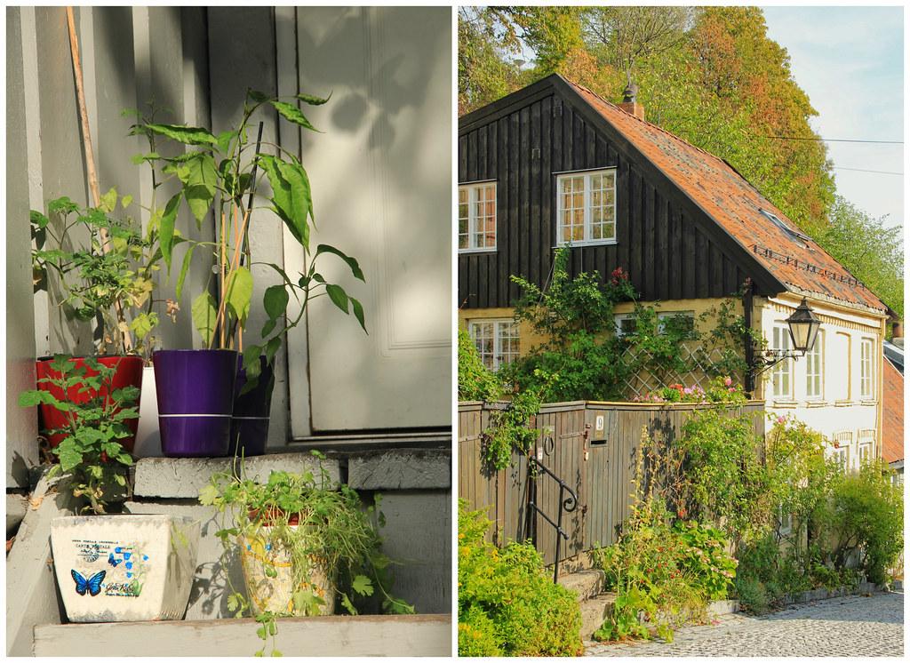 Wooden houses of Telthusbakken, Oslo