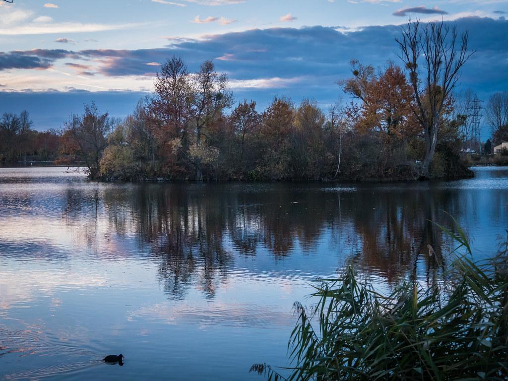 Le soir... Sur l'étang. 45877498932_a5d629ff3d_b