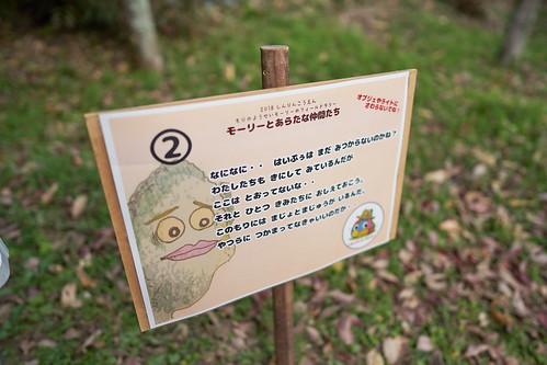 shinrinkouen (7)