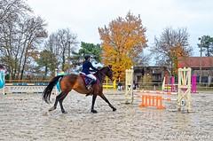 Venteille-concours-Marcheprime-2018-12-09-015 (Estelle) - Photo of Marcheprime