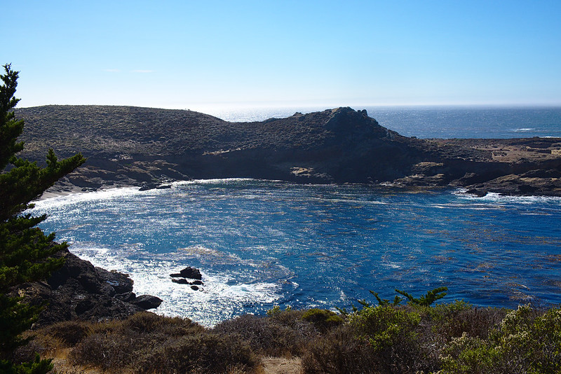 View from Cypress Grove trail, Point Lobos