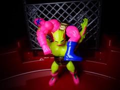 NES Pro Wrestling (07)