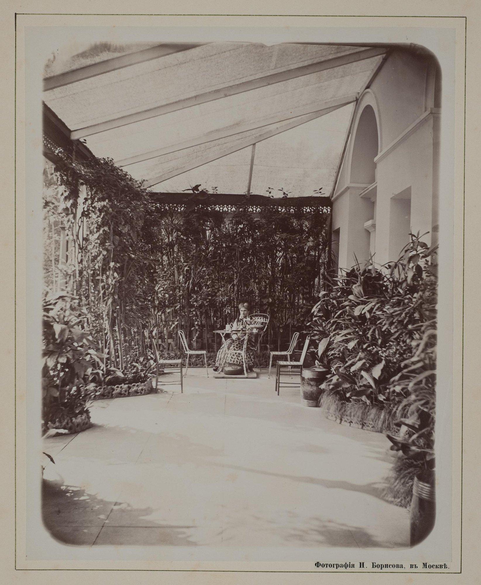 1882. Надежда Филаретовна Фон Мекк на террасе в Плещееве.