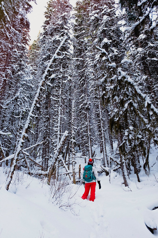 Snowshoeing - Rawson Lake - Jan 2019-18