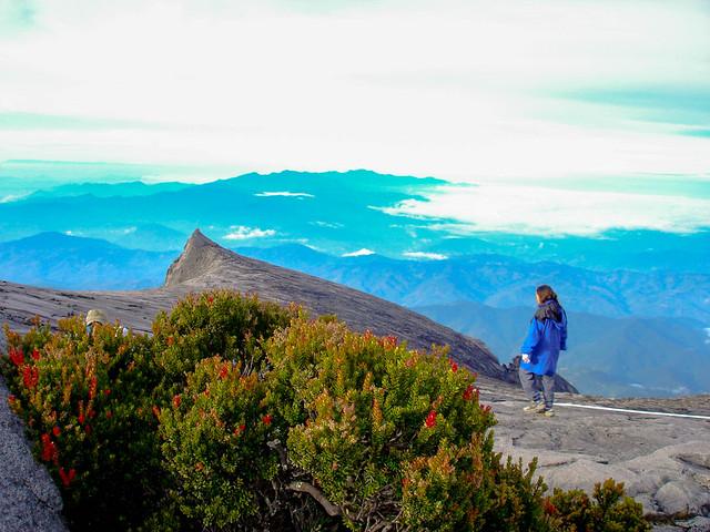 A stroll on Mt, Sony DSC-P100