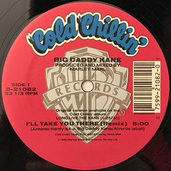 BIG DADDY KANE:I'LL TAKE YOU THERE(LABEL SIDE-A)